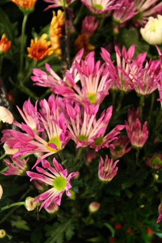 花ギフト フラワーギフト 誕生日 花 カノシェ話題 スタンド花 ウエディングブーケ 花束 花屋 IMG_0115