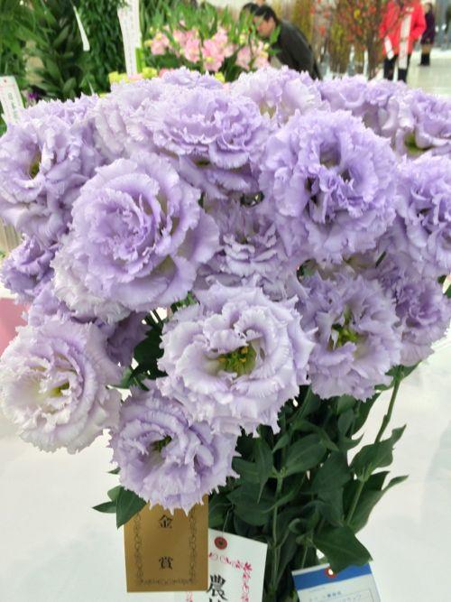 花ギフト|フラワーギフト|誕生日 花|カノシェ話題|スタンド花|ウエディングブーケ|花束|花屋|IMG_7144