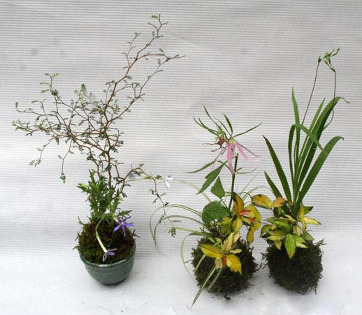 花ギフト|フラワーギフト|誕生日 花|カノシェ話題|スタンド花|ウエディングブーケ|花束|花屋|IMG_3054