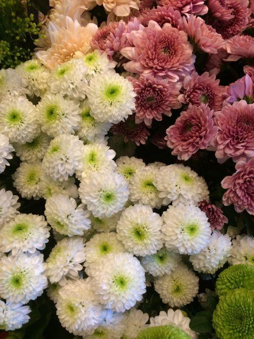 花ギフト|フラワーギフト|誕生日 花|カノシェ話題|スタンド花|ウエディングブーケ|花束|花屋|IMG_3940