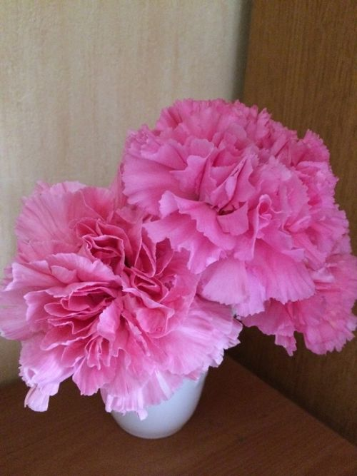 花ギフト|フラワーギフト|誕生日 花|カノシェ話題|スタンド花|ウエディングブーケ|花束|花屋|IMG_4856