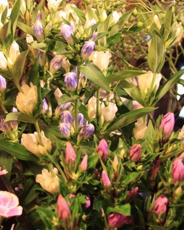 花ギフト|フラワーギフト|誕生日 花|カノシェ話題|スタンド花|ウエディングブーケ|花束|花屋|IMG_4322
