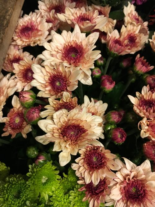 花ギフト フラワーギフト 誕生日 花 カノシェ話題 スタンド花 ウエディングブーケ 花束 花屋 IMG_4292