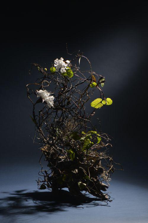 花ギフト|フラワーギフト|誕生日 花|カノシェ話題|スタンド花|ウエディングブーケ|花束|花屋|Free Choice-1