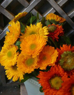 花ギフト フラワーギフト 誕生日 花 カノシェ話題 スタンド花 ウエディングブーケ 花束 花屋 ハニー