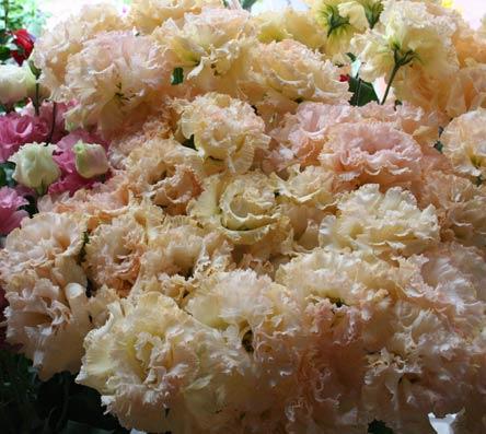 花ギフト|フラワーギフト|誕生日 花|カノシェ話題|スタンド花|ウエディングブーケ|花束|花屋|mango