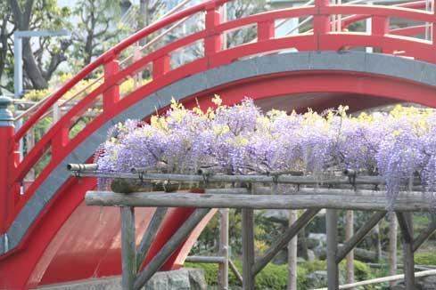 花ギフト|フラワーギフト|誕生日 花|カノシェ話題|スタンド花|ウエディングブーケ|花束|花屋|橋と