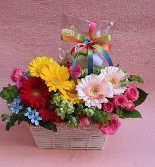 花ギフト|フラワーギフト|誕生日 花|カノシェ話題|スタンド花|ウエディングブーケ|花束|花屋|baby_a1
