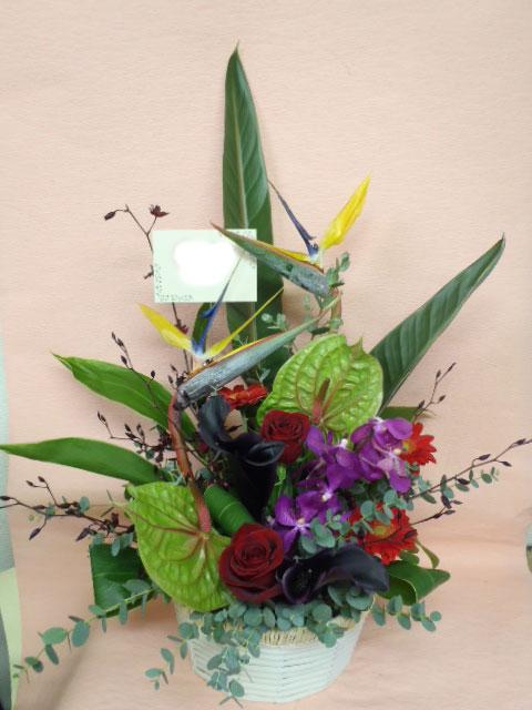 花ギフト|フラワーギフト|誕生日 花|カノシェ話題|スタンド花|ウエディングブーケ|花束|花屋|misaki-sutore