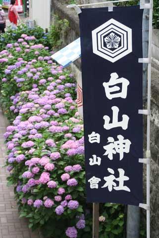 花ギフト フラワーギフト 誕生日 花 カノシェ話題 スタンド花 ウエディングブーケ 花束 花屋 白山
