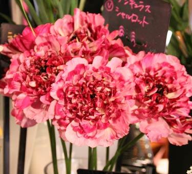花ギフト|フラワーギフト|誕生日 花|カノシェ話題|スタンド花|ウエディングブーケ|花束|花屋|IMG_6165