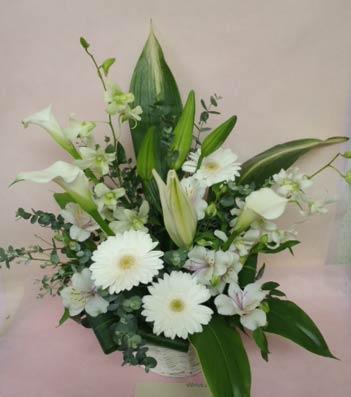 花ギフト|フラワーギフト|誕生日 花|カノシェ話題|スタンド花|ウエディングブーケ|花束|花屋|さや 白