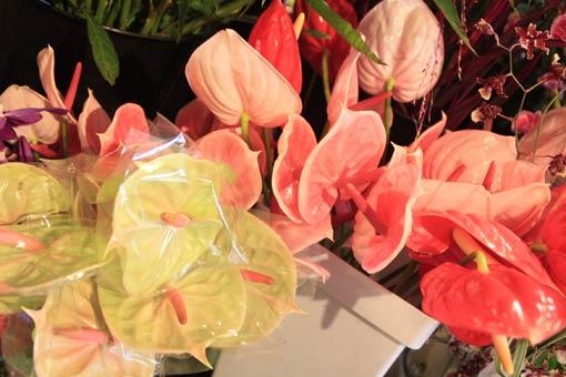 花ギフト|フラワーギフト|誕生日 花|カノシェ話題|スタンド花|ウエディングブーケ|花束|花屋|IMG_4296