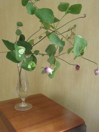 花ギフト|フラワーギフト|誕生日 花|カノシェ話題|スタンド花|ウエディングブーケ|花束|花屋|ansoni
