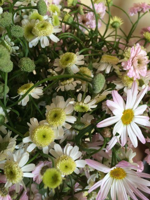 花ギフト|フラワーギフト|誕生日 花|カノシェ話題|スタンド花|ウエディングブーケ|花束|花屋|IMG_8738