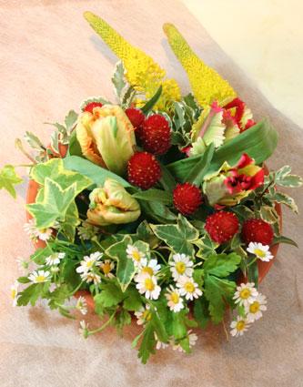 花ギフト|フラワーギフト|誕生日 花|カノシェ話題|スタンド花|ウエディングブーケ|花束|花屋|みつこさんパロット