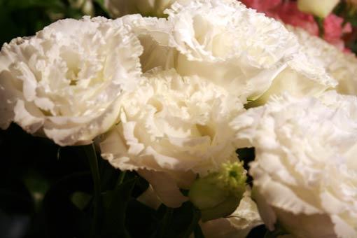 花ギフト|フラワーギフト|誕生日 花|カノシェ話題|スタンド花|ウエディングブーケ|花束|花屋|hanashokuninsan