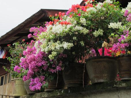 花ギフト|フラワーギフト|誕生日 花|カノシェ話題|スタンド花|ウエディングブーケ|花束|花屋|ブーゲン