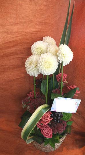 花ギフト|フラワーギフト|誕生日 花|カノシェ話題|スタンド花|ウエディングブーケ|花束|花屋|daria-siro