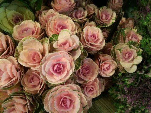 花ギフト|フラワーギフト|誕生日 花|カノシェ話題|スタンド花|ウエディングブーケ|花束|花屋|IMG_8648