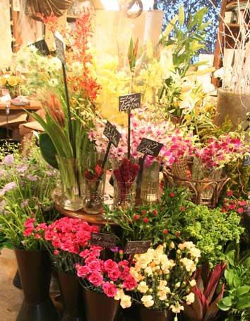 花ギフト|フラワーギフト|誕生日 花|カノシェ話題|スタンド花|ウエディングブーケ|花束|花屋|蘭