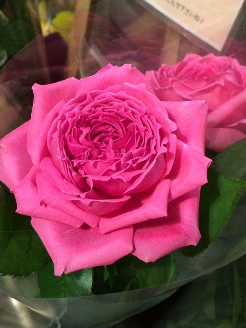 花ギフト|フラワーギフト|誕生日 花|カノシェ話題|スタンド花|ウエディングブーケ|花束|花屋|IMG_8846