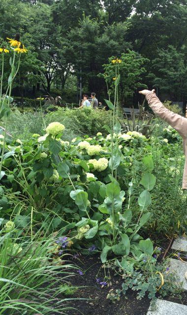 花ギフト|フラワーギフト|誕生日 花|カノシェ話題|スタンド花|ウエディングブーケ|花束|花屋|IMG_1627