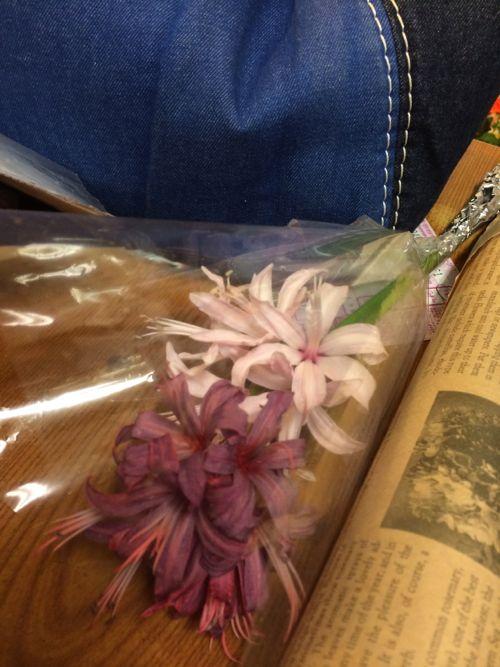 花ギフト|フラワーギフト|誕生日 花|カノシェ話題|スタンド花|ウエディングブーケ|花束|花屋|IMG_7307