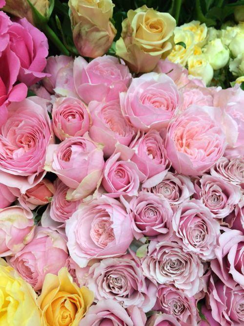 花ギフト|フラワーギフト|誕生日 花|カノシェ話題|スタンド花|ウエディングブーケ|花束|花屋|IMG_4269