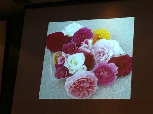 花ギフト|フラワーギフト|誕生日 花|カノシェ話題|スタンド花|ウエディングブーケ|花束|花屋|IMG_4236