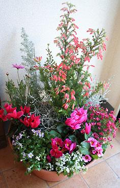 花ギフト|フラワーギフト|誕生日 花|カノシェ話題|スタンド花|ウエディングブーケ|花束|花屋|寄せ植え1