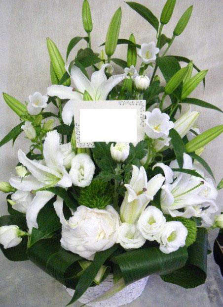 花ギフト|フラワーギフト|誕生日 花|カノシェ話題|スタンド花|ウエディングブーケ|花束|花屋|shakuyakukanpa
