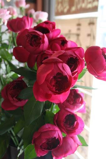 花ギフト|フラワーギフト|誕生日 花|カノシェ話題|スタンド花|ウエディングブーケ|花束|花屋|IMG_0952