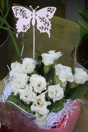 花ギフト|フラワーギフト|誕生日 花|カノシェ話題|スタンド花|ウエディングブーケ|花束|花屋|chou