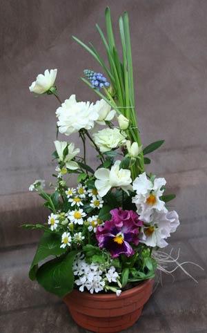 花ギフト|フラワーギフト|誕生日 花|カノシェ話題|スタンド花|ウエディングブーケ|花束|花屋|IMG_6072