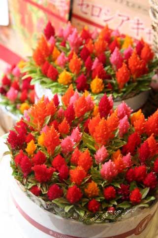 花ギフト|フラワーギフト|誕生日 花|カノシェ話題|スタンド花|ウエディングブーケ|花束|花屋|キャンドル