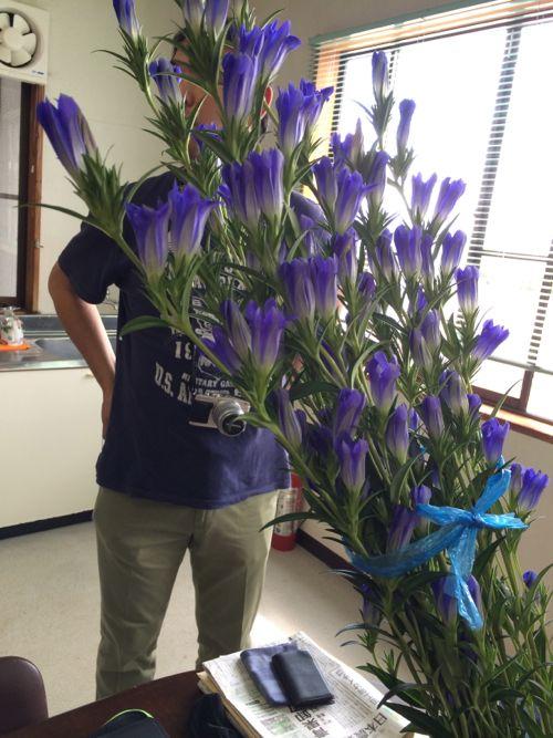 花ギフト|フラワーギフト|誕生日 花|カノシェ話題|スタンド花|ウエディングブーケ|花束|花屋|IMG_6663