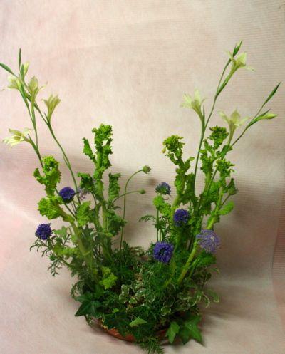 花ギフト|フラワーギフト|誕生日 花|カノシェ話題|スタンド花|ウエディングブーケ|花束|花屋|IMG_6489