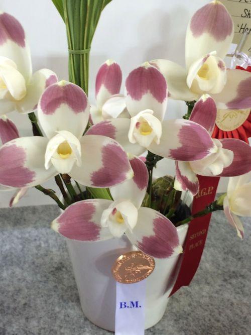花ギフト|フラワーギフト|誕生日 花|カノシェ話題|スタンド花|ウエディングブーケ|花束|花屋|IMG_9446