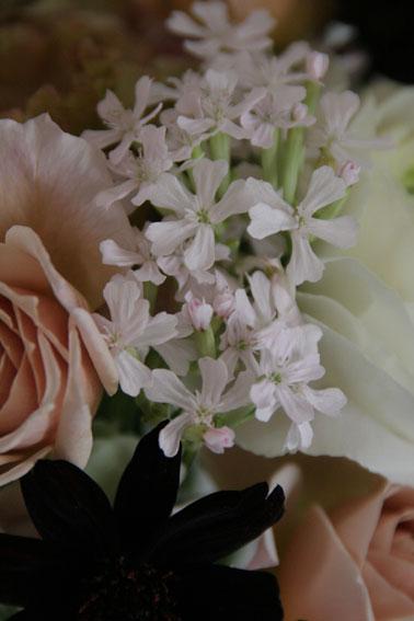 花ギフト|フラワーギフト|誕生日 花|カノシェ話題|スタンド花|ウエディングブーケ|花束|花屋|sakurakomati