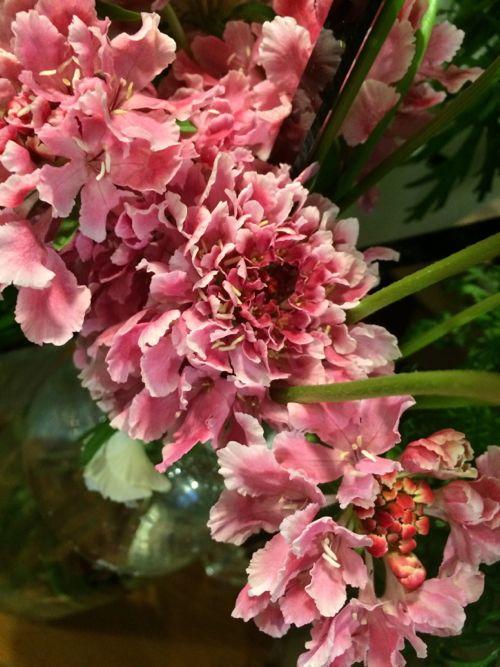 花ギフト|フラワーギフト|誕生日 花|カノシェ話題|スタンド花|ウエディングブーケ|花束|花屋|IMG_9167