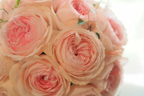 花ギフト|フラワーギフト|誕生日 花|カノシェ話題|スタンド花|ウエディングブーケ|花束|花屋|P4222472
