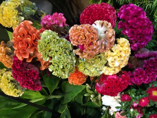 花ギフト フラワーギフト 誕生日 花 カノシェ話題 スタンド花 ウエディングブーケ 花束 花屋 IMG_4287