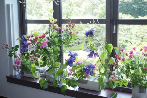 花ギフト|フラワーギフト|誕生日 花|カノシェ話題|スタンド花|ウエディングブーケ|花束|花屋|P6102996