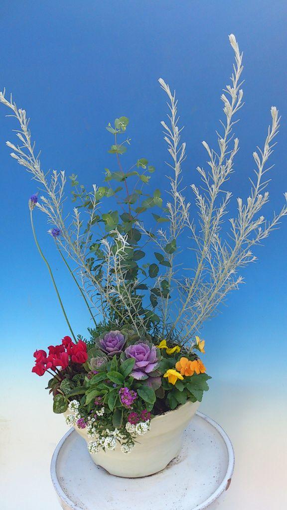 花ギフト|フラワーギフト|誕生日 花|カノシェ話題|スタンド花|ウエディングブーケ|花束|花屋|DSC_1155