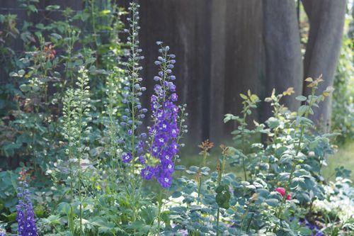 花ギフト|フラワーギフト|誕生日 花|カノシェ話題|スタンド花|ウエディングブーケ|花束|花屋|P6102983