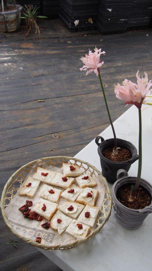 花ギフト|フラワーギフト|誕生日 花|カノシェ話題|スタンド花|ウエディングブーケ|花束|花屋|P1010952