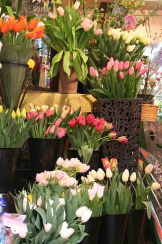 花ギフト|フラワーギフト|誕生日 花|カノシェ話題|スタンド花|ウエディングブーケ|花束|花屋|リップフェア1