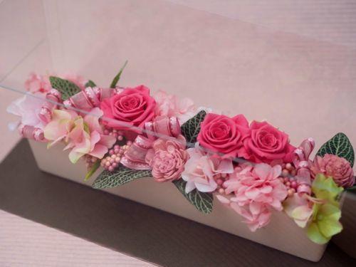 pri_waltz 1 pink(2)