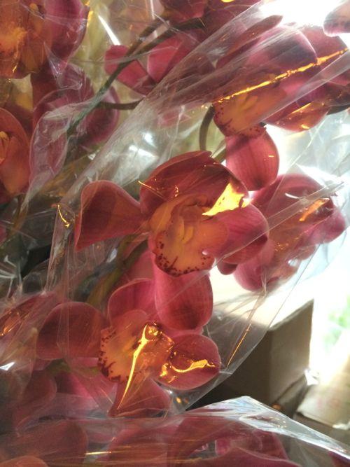 花ギフト|フラワーギフト|誕生日 花|カノシェ話題|スタンド花|ウエディングブーケ|花束|花屋|IMG_8653
